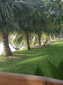 Hammocks next to the fish pond at our homestay.